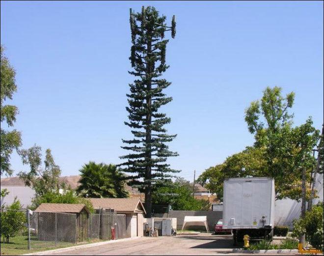 Вышка сотовой связи в виде дерева